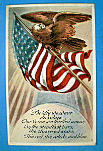 Boldly We Wave Postcard With Eagle On American Flag