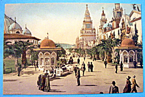Palm Avenue, Panama Pacific Exposition Postcard