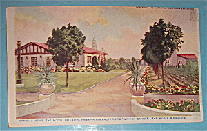 The Model Bungalow Postcard