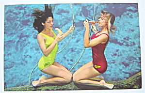 Two Weeki Wachee Mermaids Postcard