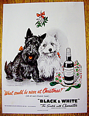 1950 Black & White Scotch With Two Scotty Dogs