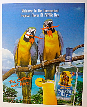 2001 Captain Morgan's Parrot Bay W/two Parrots