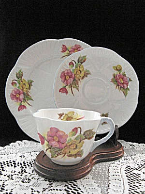 Shelley Bone China Begonia Trio
