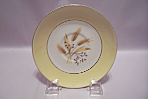 Century Service Autumn Gold Pattern China Saucer