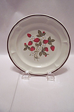 Newcor Stoneware Susanne Pattern Salad Plate