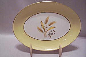 Century Service Autumn Gold China Oval Platter/relish