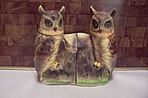 Pair Of Porcelain Owl Bookends