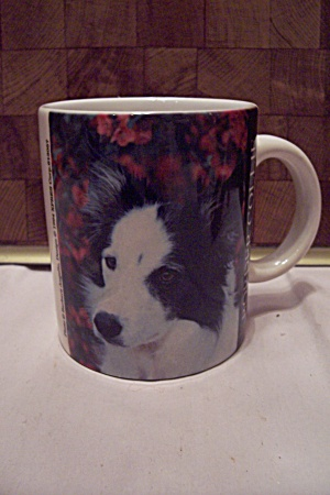 Porcelain Border Collie Dog Mug