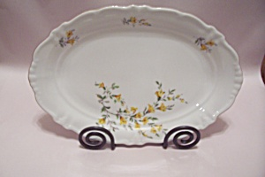 Winterling Bavarian Fine China Oval Platter