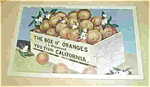 The Box Of Oranges I Promised You From Ca.