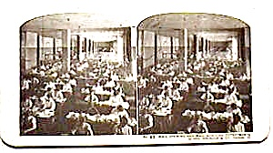 Sears Roebuck Stereo View #22