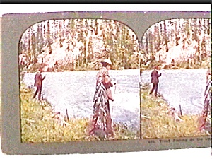 Trout Fishing...upper Columbia River Stereo View