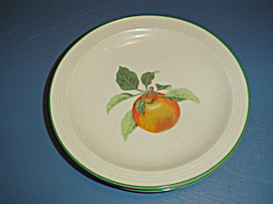 Mikasa Studio Nova Fruit Medley Apple Salad Plate