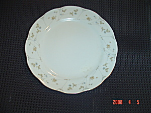 Home Beautiful Briarwood Dinner Plates