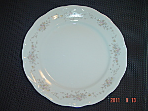 Johann Haviland Floral Splendor Dinner Plates