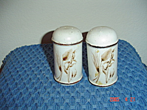Wedgwood Midwinter Wild Oats Salt And Pepper Shakers