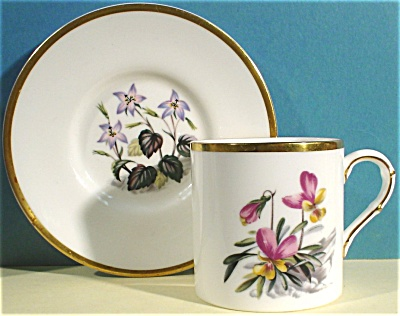 Small Royal Worcester Cup And Saucer