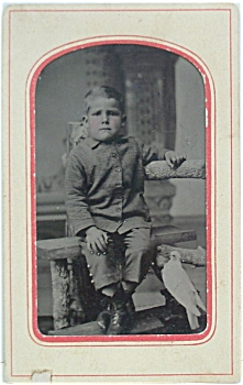 Tintype 1/6th Plate - Little Boy With Bird.