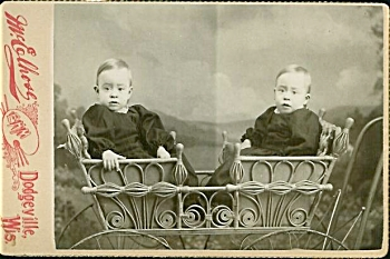 Cabinet Photo - Twins In Wicker Stroller