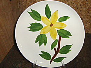 Golden Jasmine Usa Dinner Plate