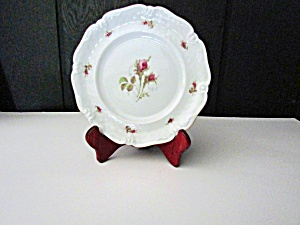 Vintage Dinnerware Royal Coburg, 010775 Luncheon Plate