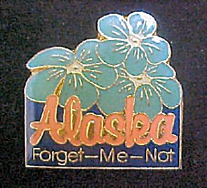 Alaska - Forget-me-not/souvenir Pin
