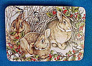 Rabbits Tin - Woodland Celebration