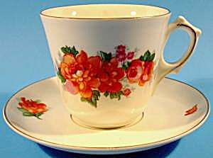 China Cup And Saucer - Schonwald Bavaria Germany