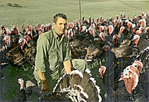 1950s Vintage Photo: Iowa Farmer Up-close With Turkeys