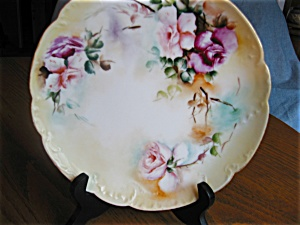 Haviland French Limoges Display Plate