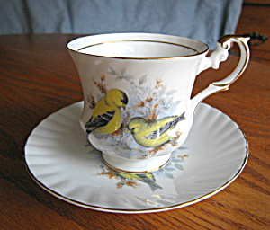Rosina Gold Finch Teacup