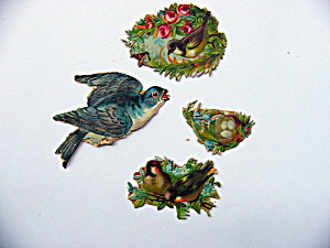 Victorian Die-cut Nests And Bird