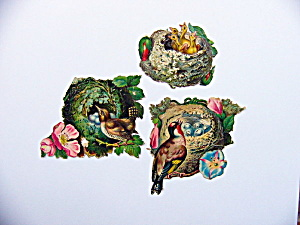 Victorian Die-cut Nests With Birds
