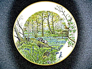 Porcelain The Woodlands In April By Peter Barrett