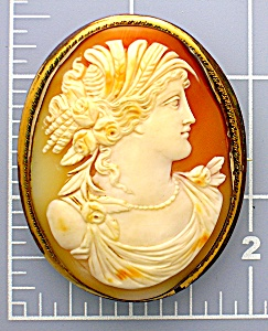 Cameo Carved Shell Italian 2 3/8 Inch Gilt Brass