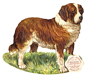 Antique Reproduction Saint Bernard Rocker Card