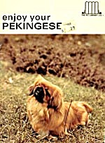 Enjoy Your Pekingese