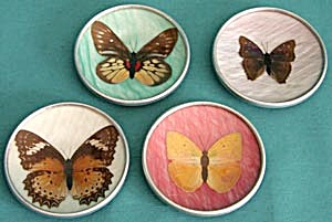 Vintage Butterfly Coaster Set Of 4