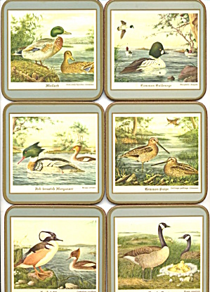 Pimpernel Water Birds Made In England Set Of 6 Coasters