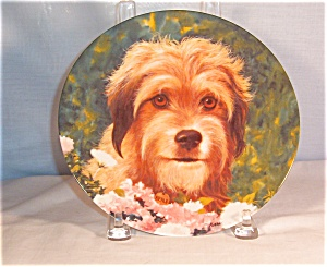Wags To Riches-benji The Movie Star- Collectors Plate