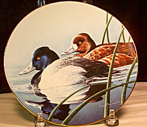 The Lesser Scaup 1990 Collector Plate
