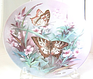White Peacocks-on Gossamer Wings Butterfly Plate