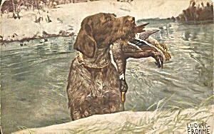 Raphael Tuck Retriever With Duck Jagdhunder P37275