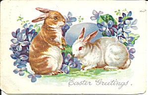 Easter Postcards Tuck S Postcard P37325 1906