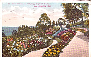 Elysian Park Los Angeles The Walks In January P38636