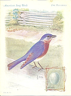 Singer Sewing Machines The Bluebird Trade Card Tc0237